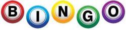 National Domino Association Bingo
